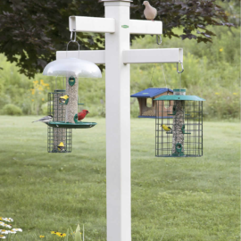 PVC pipe bird feeder